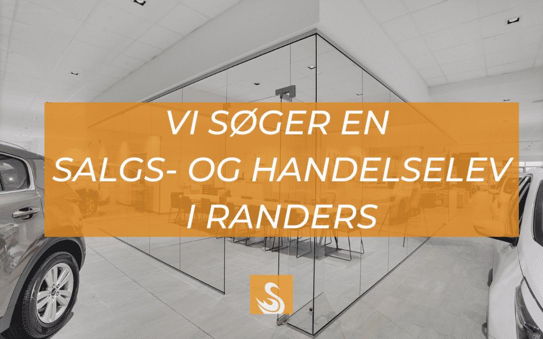 Svane Glas søger salgs- og handelselev i Randers